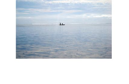 Climate Change Adaptation in Fisheries and Aquaculture