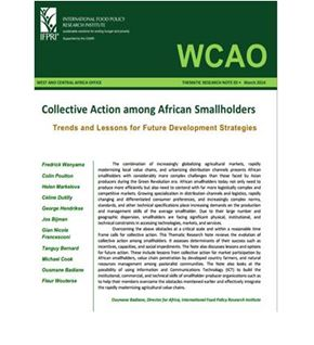 Collective Action among African Smallholders