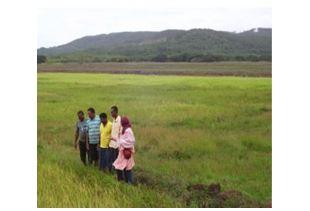 Facilitators' guide book for farmers' field schools