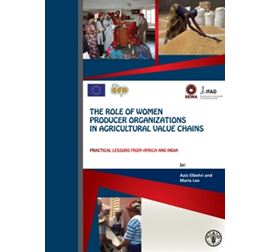 THE ROLE OF WOMEN PRODUCER ORGANIZATIONS IN AGRICULTURAL VALUE CHAINS
