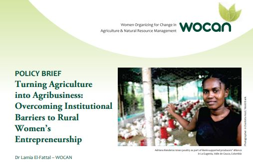 Turning Agriculture into Agribusiness