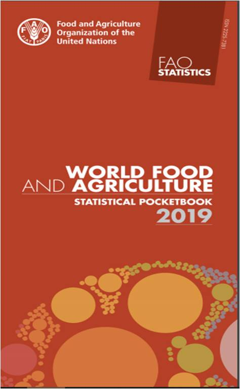 fao publicATION 2019_n