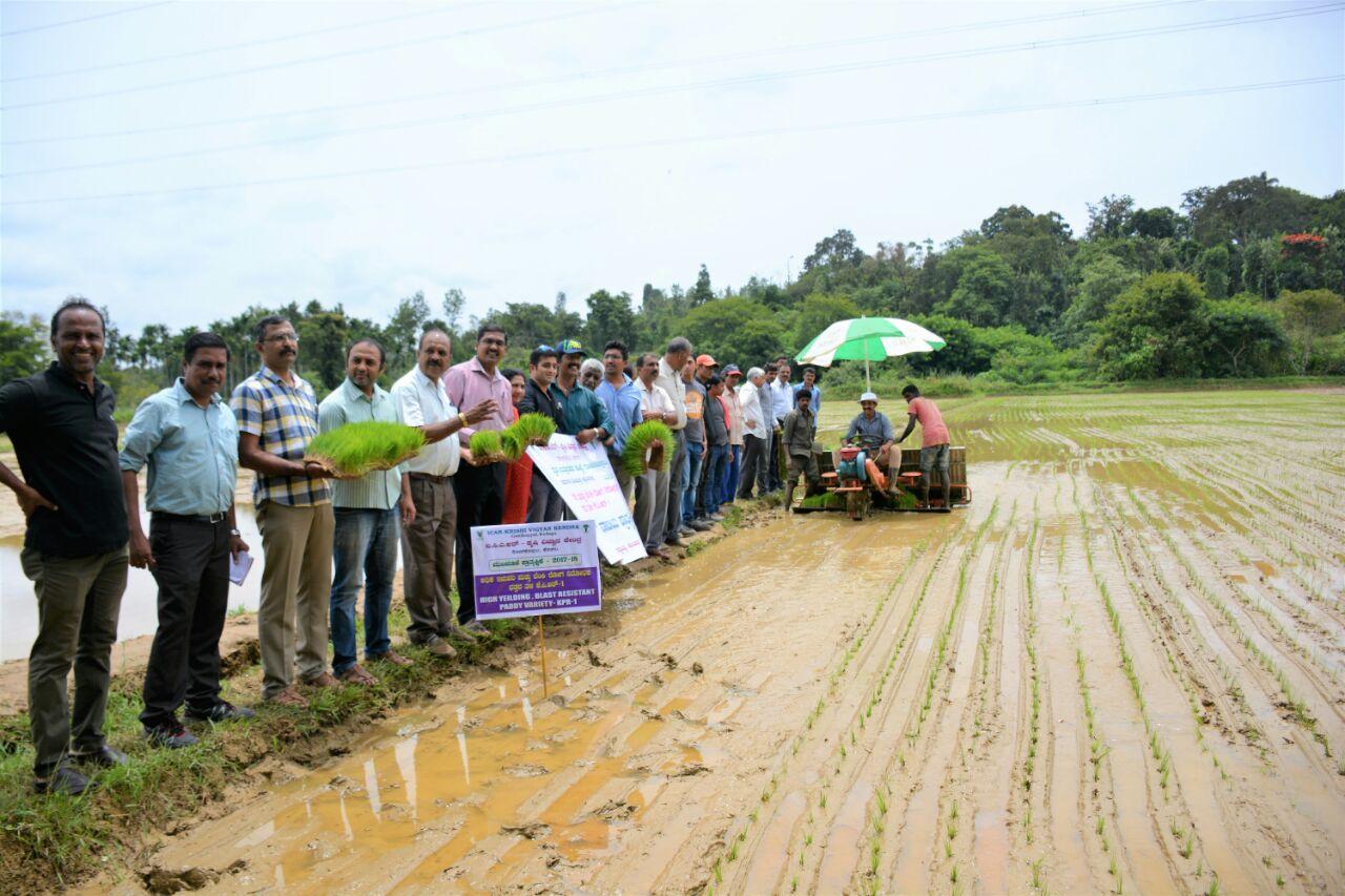 Promoting Paddy transplanting