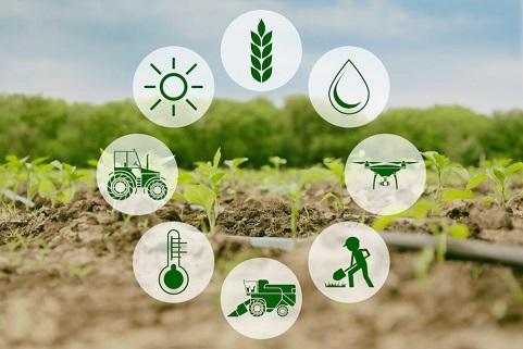 farm-agri-business