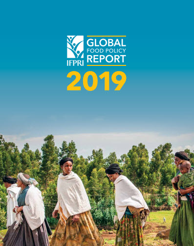 IFPRI Global food policy report 2019