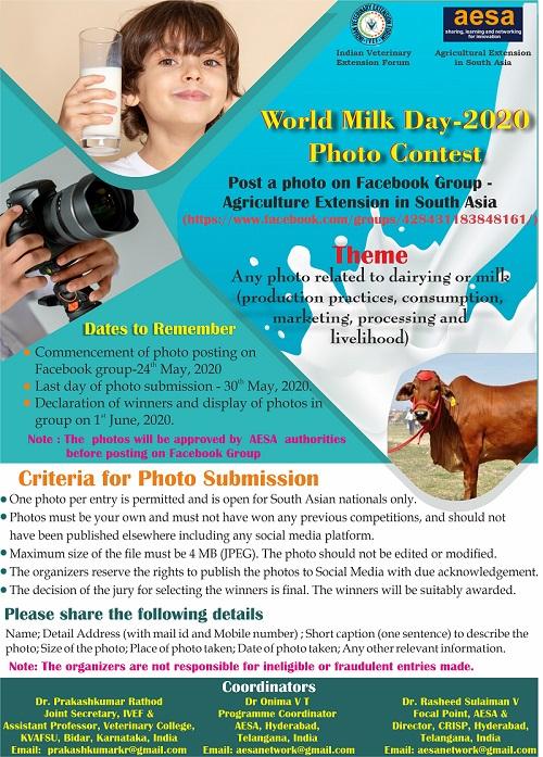 Final Photo Contest Flyer