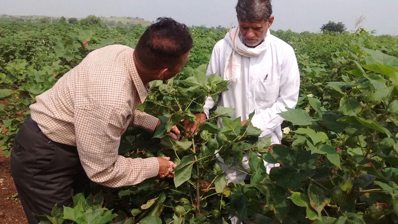Jain Aronomist Teaching Farmer in Madhya Pradesh