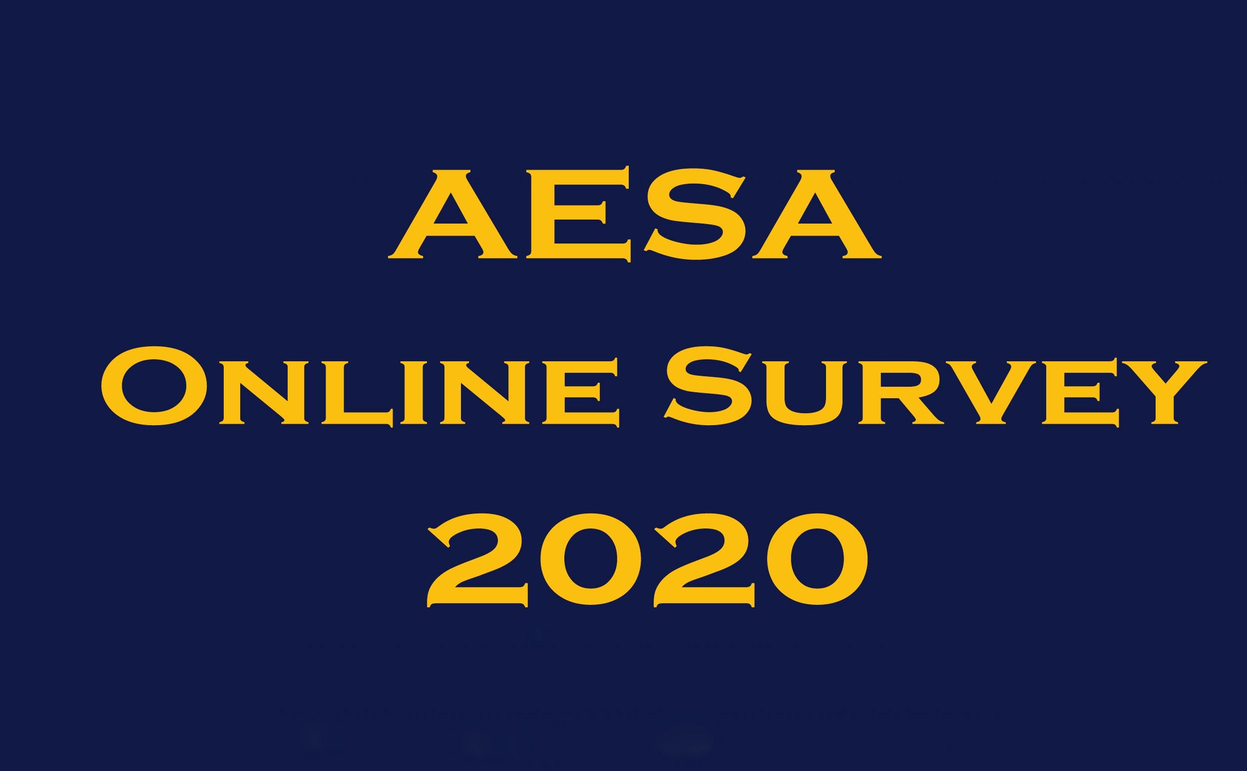 Aesa Online Survey 2020-1