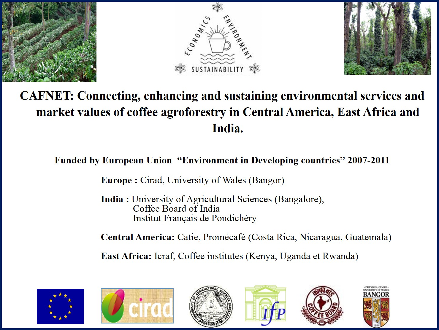 agroforestry in cof