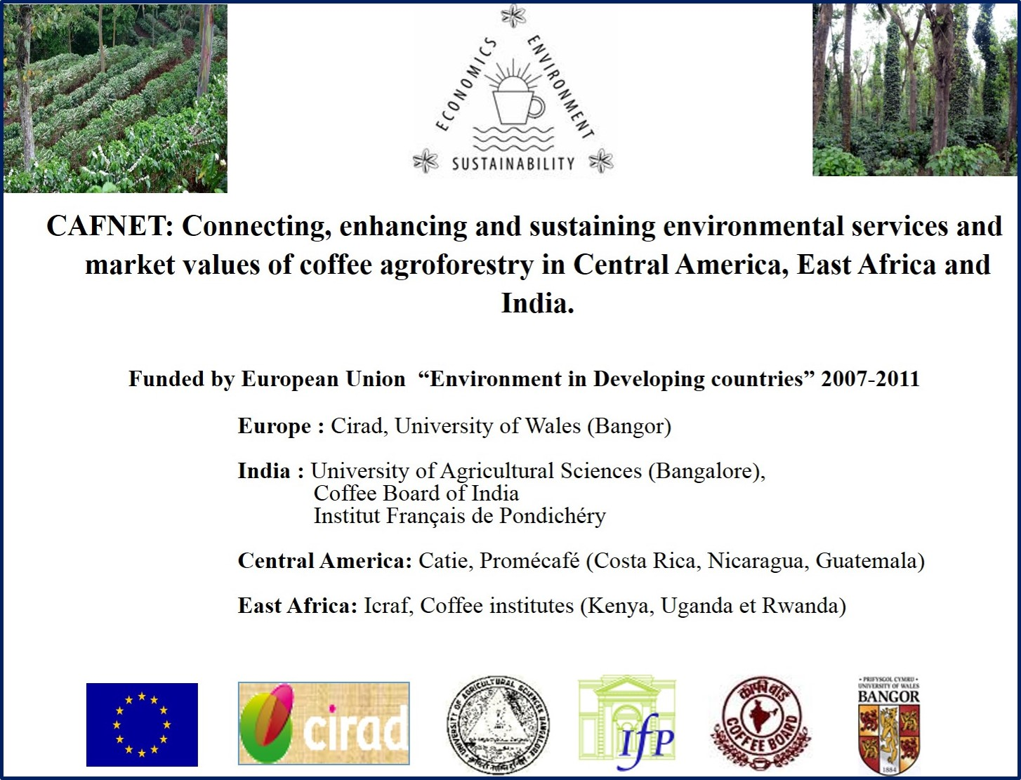 agroforestry in coffee