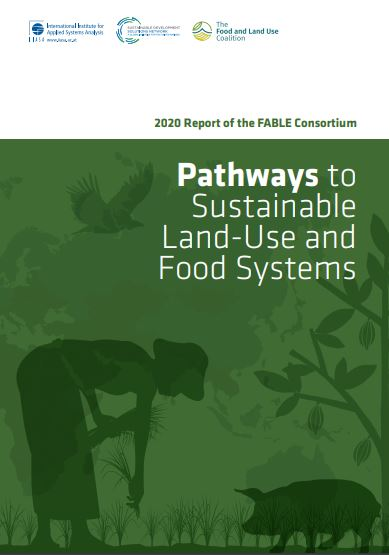 pathways to sustainable land-use and food system