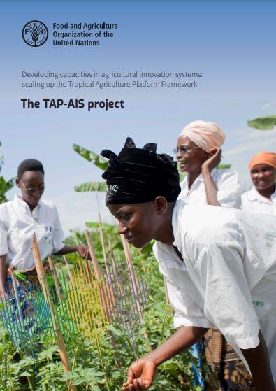 tap-ais-project_brochure_01