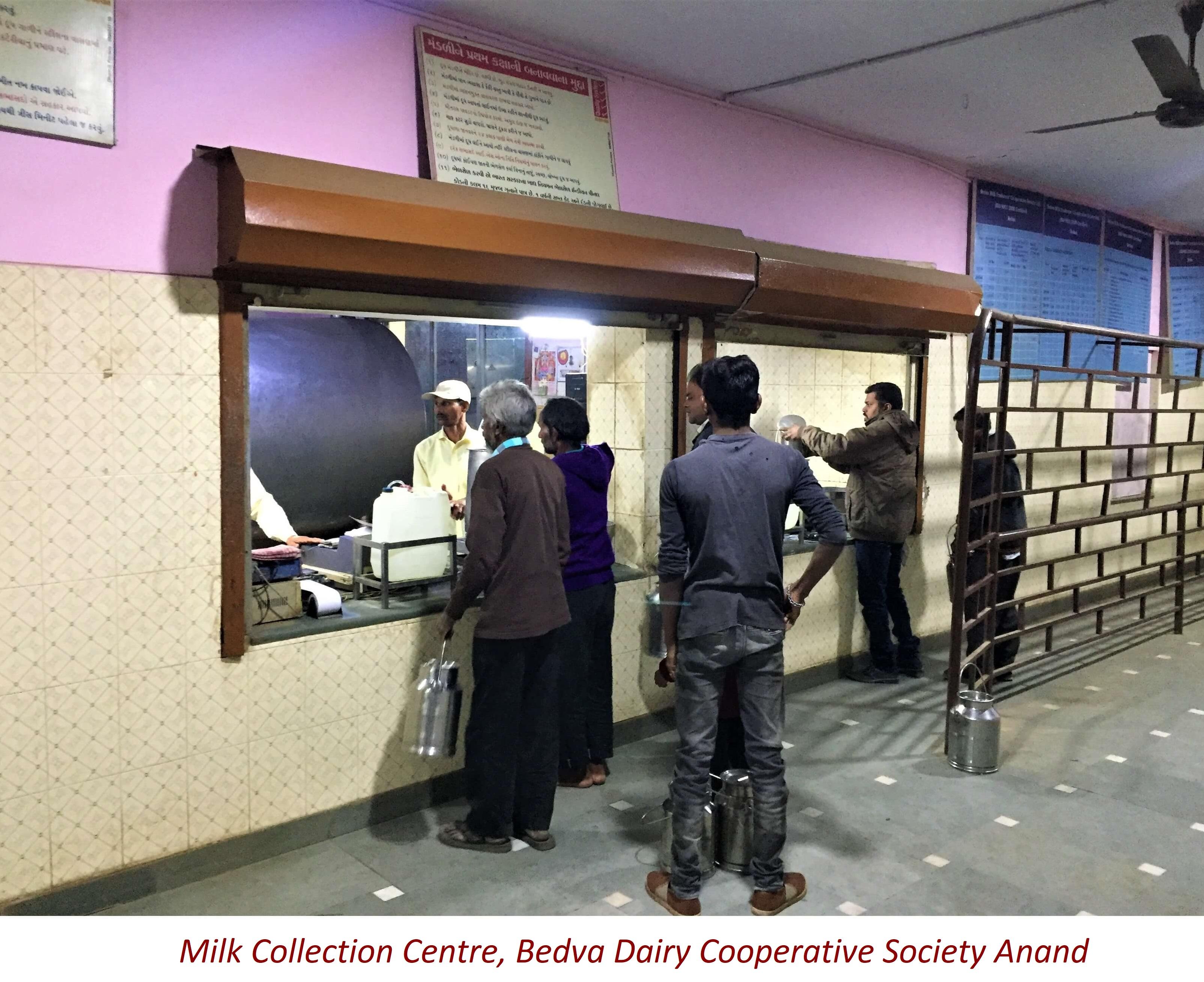 Bedva DCS_Milk Collection Centre_Anand (1)