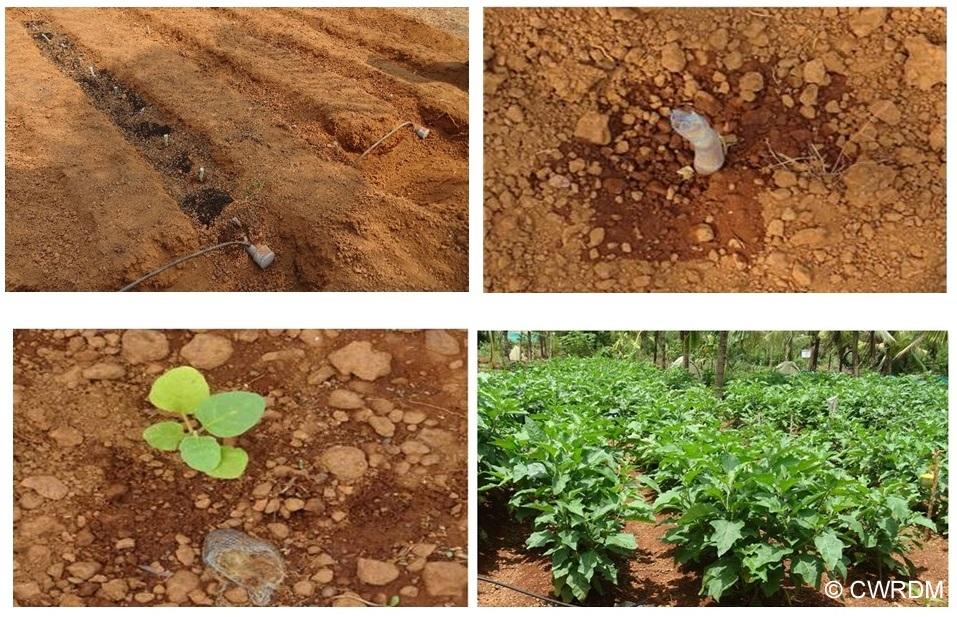 Wick irrigation