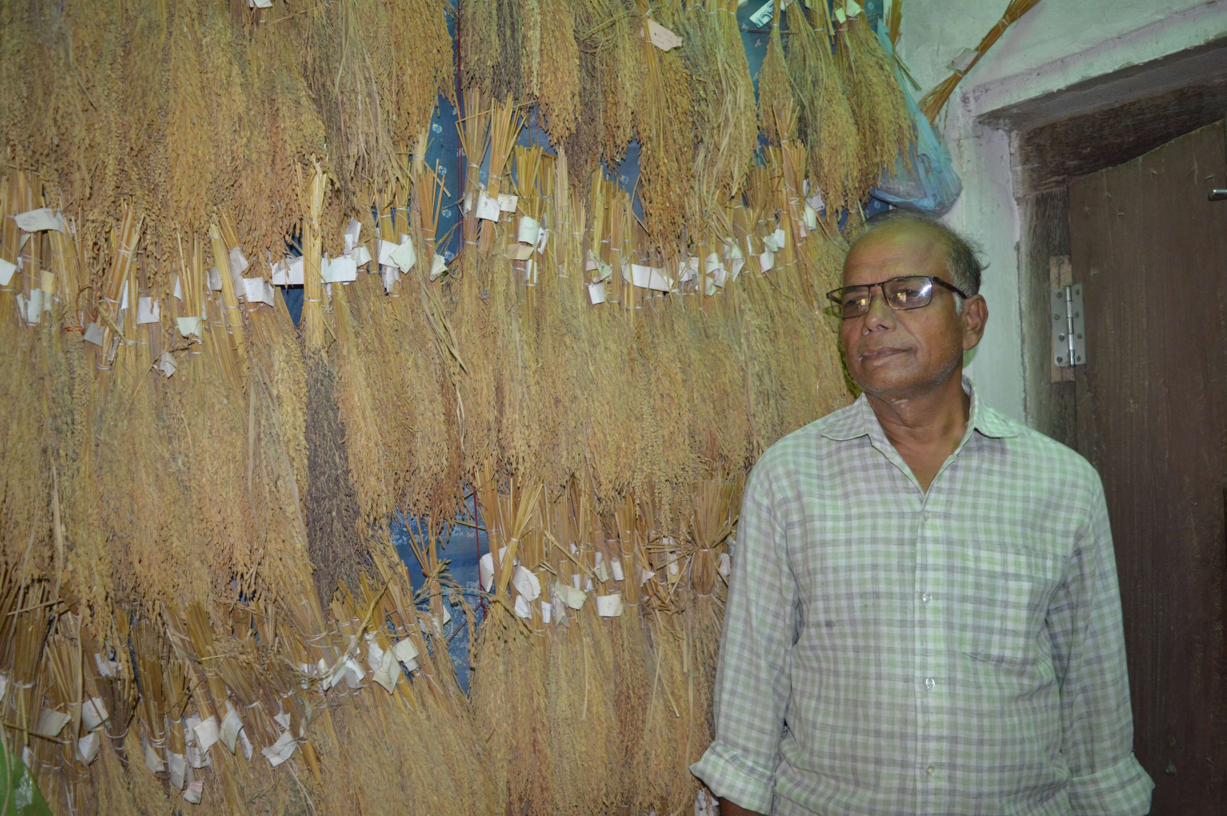 Mr Patnaik in front of his diverse rice varietal collection conserved at home (1)